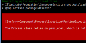 The Process class relies on proc_open, which is not available on your PHP installation.